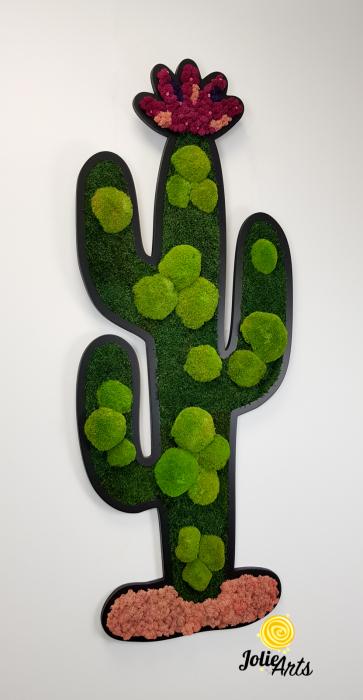 Model Cactus [0]