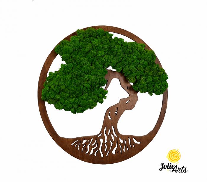 Copacul vietii decorat cu licheni naturali stabilizati, suport culoare maro [0]