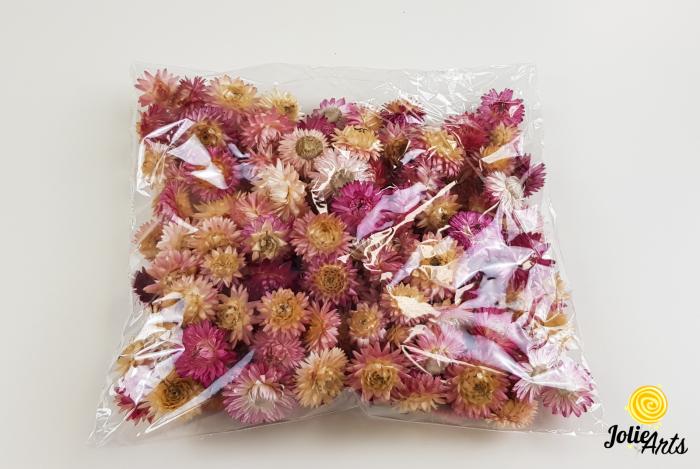 Flori de paie, nuante roz [0]