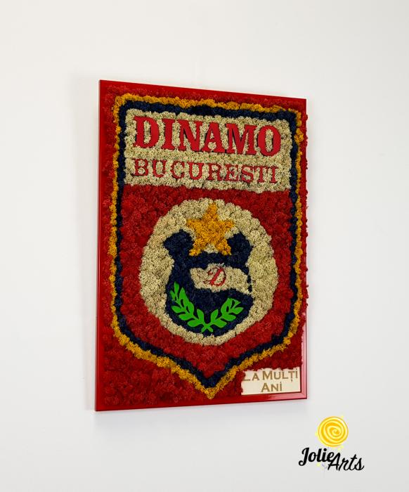 Logo Dinamo cu licheni [3]