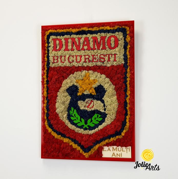 Logo Dinamo cu licheni [1]