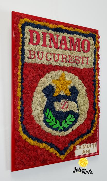 Logo Dinamo cu licheni [4]