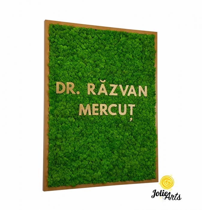Logo Dr. R.M. decorat cu licheni naturali [0]