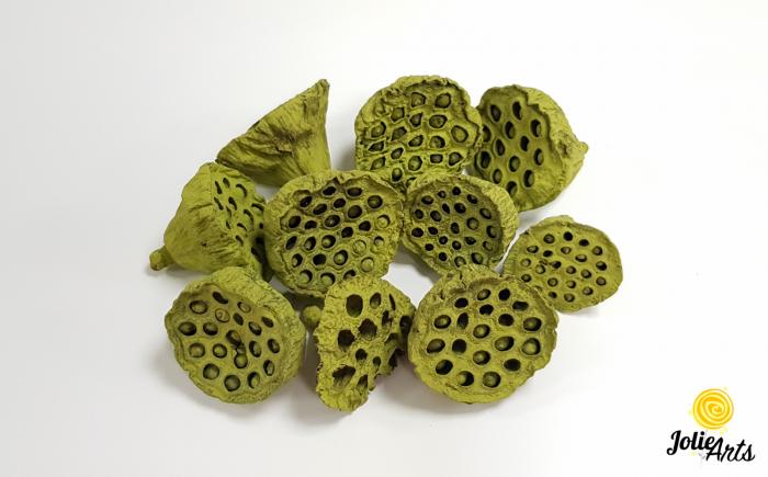 Lotus Verde natural conservat, Jolie Arts, www.tablouriculicheni.ro [0]