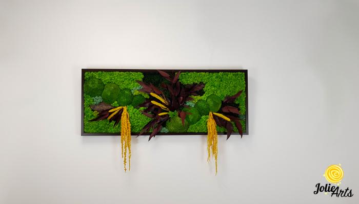 Model Amalonis, tablou licheni, muschi si plante naturale stabilizate, Jolie Arts, www.tablouriculicheni.ro-2 [2]
