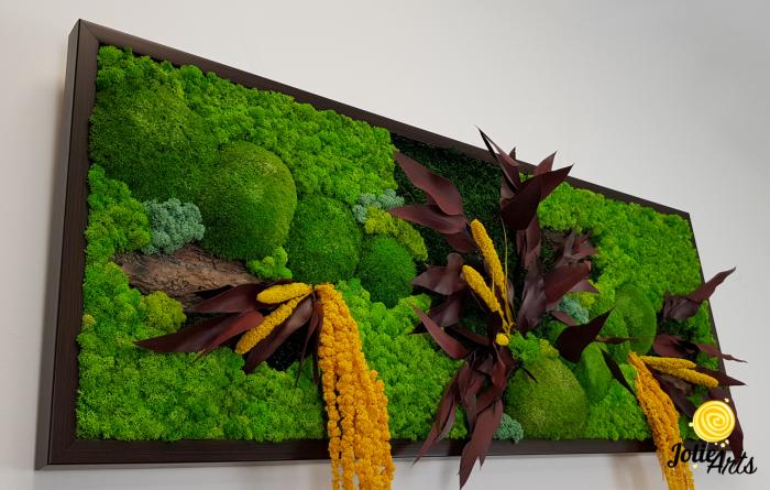 Model Amalonis, tablou licheni, muschi si plante naturale stabilizate, Jolie Arts, www.tablouriculicheni.ro-2 [5]