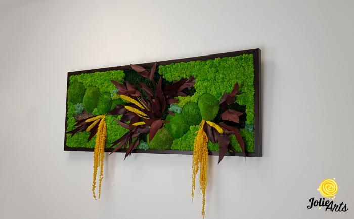 Model Amalonis, tablou licheni, muschi si plante naturale stabilizate, Jolie Arts, www.tablouriculicheni.ro-2 [1]