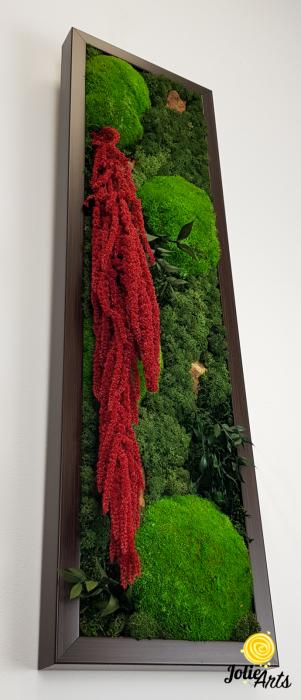 Tablou licheni, muschi si plante naturale stabilizate, Model Amaranthus 2, Jolie Arts, www.tablouriculicheni.ro-5 [3]