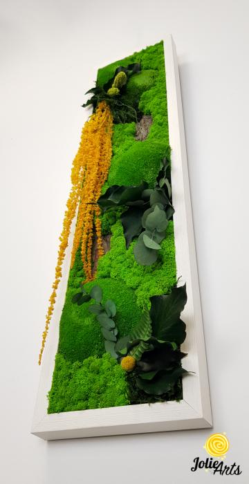 Tablou licheni, muschi si plante naturale stabilizate, Model Amaranthus galben, design vertical, 20 x 80 cm, rama neagra, Jolie Arts, www.tablouriculicheni.ro-3 [5]