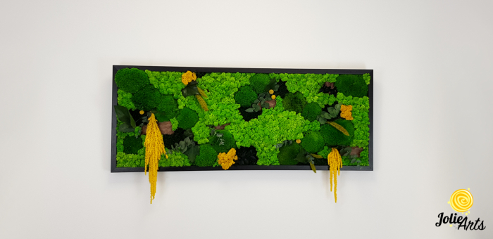 Tablou licheni, muschi si plante naturale stabilizate, Model Amaranthus galben, 40 x 100 cm, rama neagra, Jolie Arts, www.tablouriculicheni.ro-3 [2]