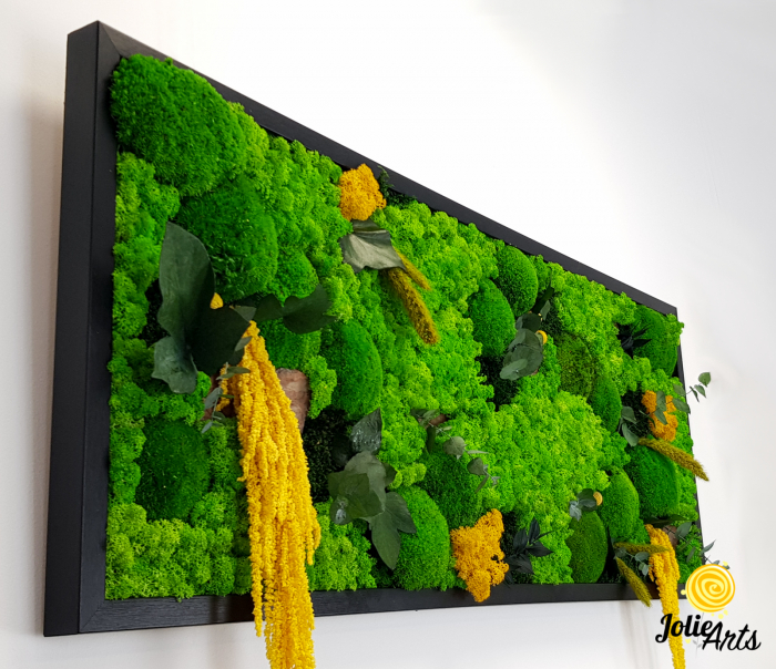 Tablou licheni, muschi si plante naturale stabilizate, Model Amaranthus galben, 40 x 100 cm, rama neagra, Jolie Arts, www.tablouriculicheni.ro-3 [4]