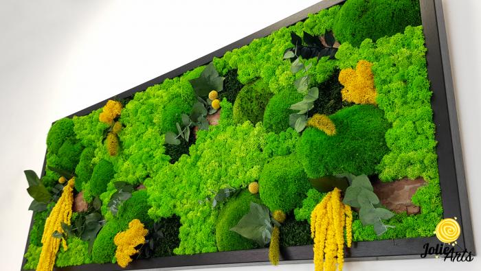 Tablou licheni, muschi si plante naturale stabilizate, Model Amaranthus galben, 40 x 100 cm, rama neagra, Jolie Arts, www.tablouriculicheni.ro-3 [5]