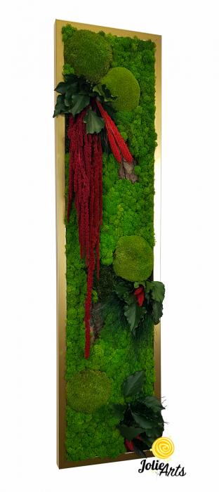 Model Amaranthus Rosu Personalizat [0]