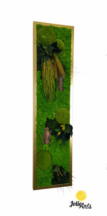 Model Amaranthus Verde Personalizat [0]