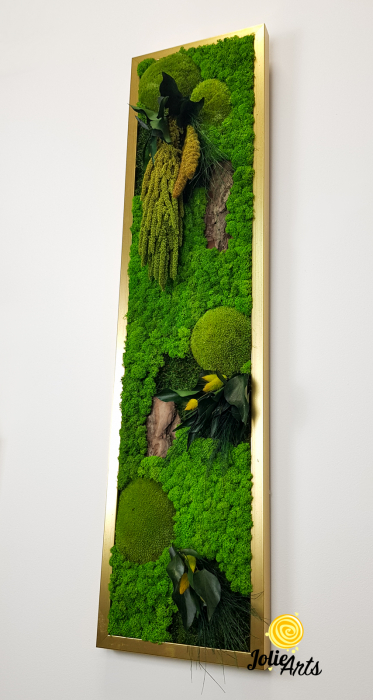 Model Amaranthus Verde Personalizat [5]