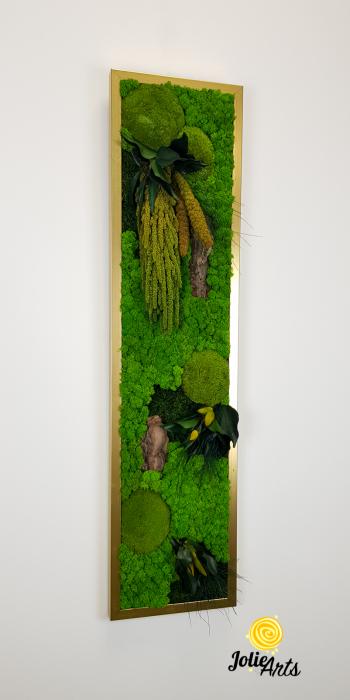 Model Amaranthus Verde Personalizat [3]