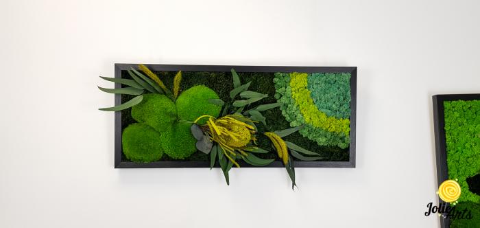 Tablou licheni naturali stabilizati, muschi bombati si plante naturale stabilizate, Jolie Arts, Model Banskia, dimensiune 30 x 70 cm, rama neagra, www.tablouriculicheni.ro-2 [2]