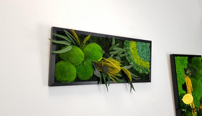 Tablou licheni naturali stabilizati, muschi bombati si plante naturale stabilizate, Jolie Arts, Model Banskia, dimensiune 30 x 70 cm, rama neagra, www.tablouriculicheni.ro-2 [3]
