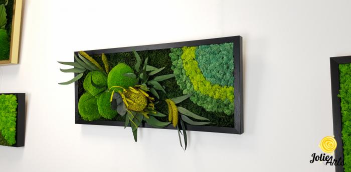 Tablou licheni naturali stabilizati, muschi bombati si plante naturale stabilizate, Jolie Arts, Model Banskia, dimensiune 30 x 70 cm, rama neagra, www.tablouriculicheni.ro-2 [1]