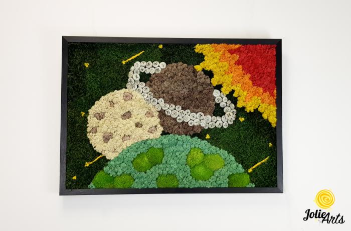 Model Cosmos, Licheni, Muschi si Elemente Naturale Decorative [2]