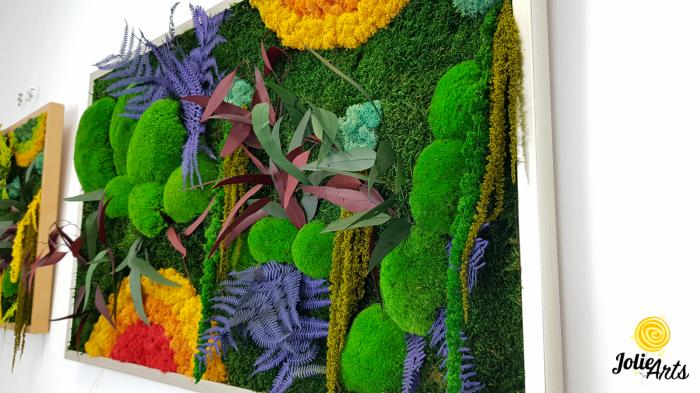 Model Curcubeu, plante conservate, muschi naturali de padure si licheni [2]
