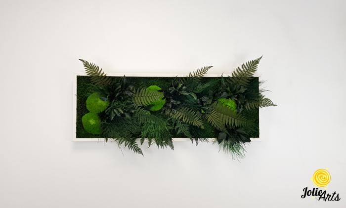 Tablou muschi si plante naturale stabilizate, Model Exotic, Jolie Arts, www.tablouriculicheni.ro-6 [1]
