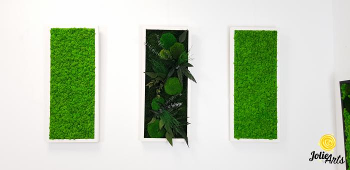 Model Green Day, set 3 tablouri dimensiune 30 x 70 cm [3]