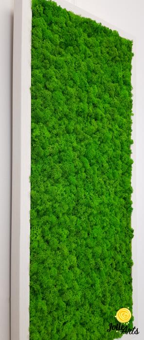 Model Green Day, set 3 tablouri dimensiune 30 x 70 cm [7]