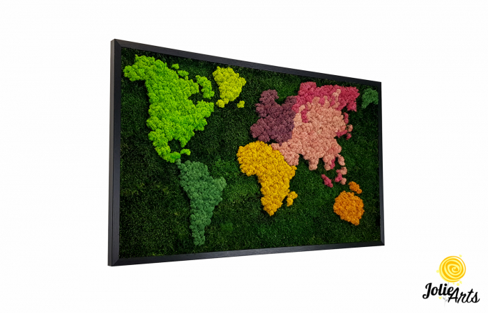 Tablou licheni, muschi plati, Model Harta, dimensiune 60 x 100 cm, rama culoare natur, Jolie Arts, www.tablouriculicheni.ro-3 [0]