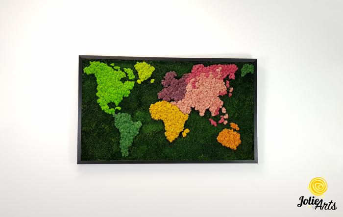 Tablou licheni, muschi plati, Model Harta, dimensiune 60 x 100 cm, rama culoare natur, Jolie Arts, www.tablouriculicheni.ro-3 [2]