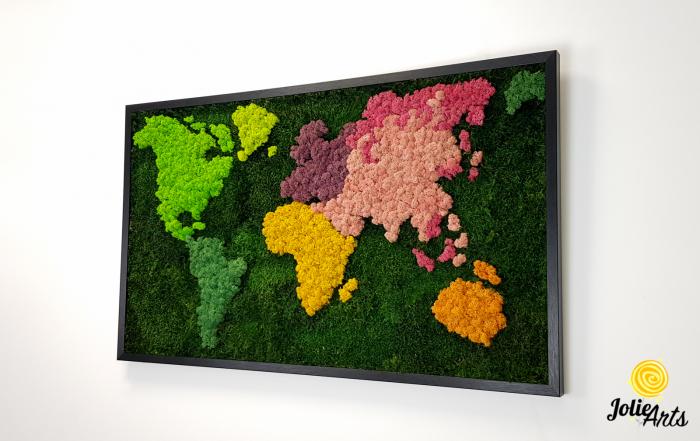 Tablou licheni, muschi plati, Model Harta, dimensiune 60 x 100 cm, rama culoare natur, Jolie Arts, www.tablouriculicheni.ro-3 [1]