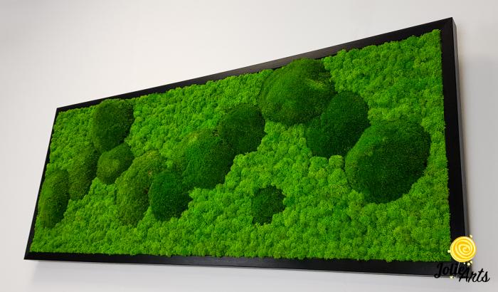 Model Muschi Bombati Verde Deschis si Licheni Naturali Stabilizati [4]