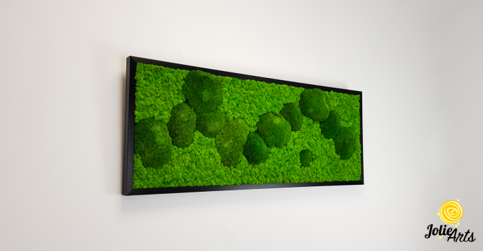 Model Muschi Bombati Verde Deschis si Licheni Naturali Stabilizati [3]