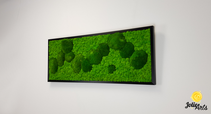 Model Muschi Bombati Verde Deschis si Licheni Naturali Stabilizati [1]