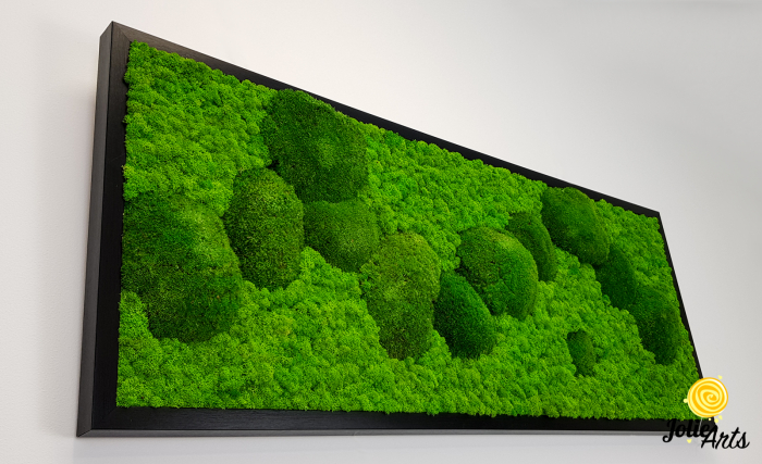Model Muschi Bombati Verde Deschis si Licheni Naturali Stabilizati [5]