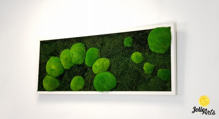 Model muschi naturali stabilizati de padure, dimensiune 40 x 100 cm, rama alba, Jolie Arts, www.tablouriculicheni.ro-2 [1]