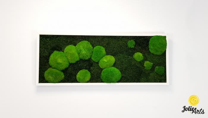Model muschi naturali stabilizati de padure, dimensiune 40 x 100 cm, rama alba, Jolie Arts, www.tablouriculicheni.ro-2 [2]