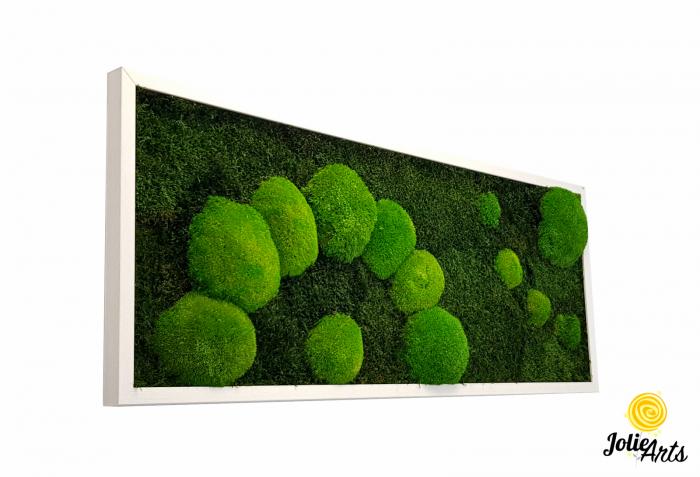 Model muschi naturali stabilizati de padure, dimensiune 40 x 100 cm, rama alba, Jolie Arts, www.tablouriculicheni.ro-2 [0]