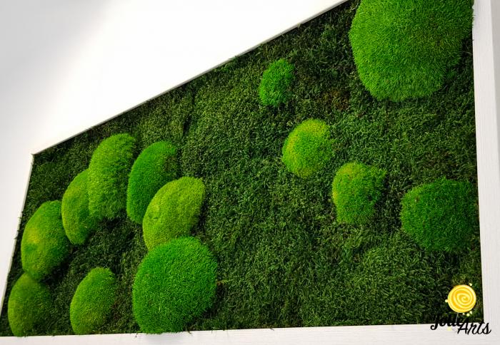 Model muschi naturali stabilizati de padure, dimensiune 40 x 100 cm, rama alba, Jolie Arts, www.tablouriculicheni.ro-2 [4]