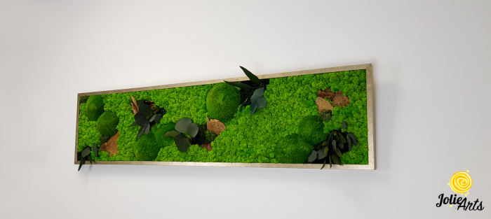 Tablou licheni, muschi si plante naturale stabilizate. Model Mushrooms, Jolie Arts, www.tablouriculicheni.ro-2 [1]