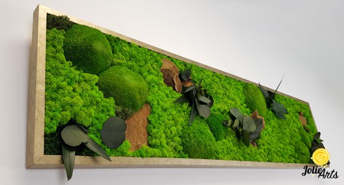 Tablou licheni, muschi si plante naturale stabilizate. Model Mushrooms, Jolie Arts, www.tablouriculicheni.ro-2 [4]