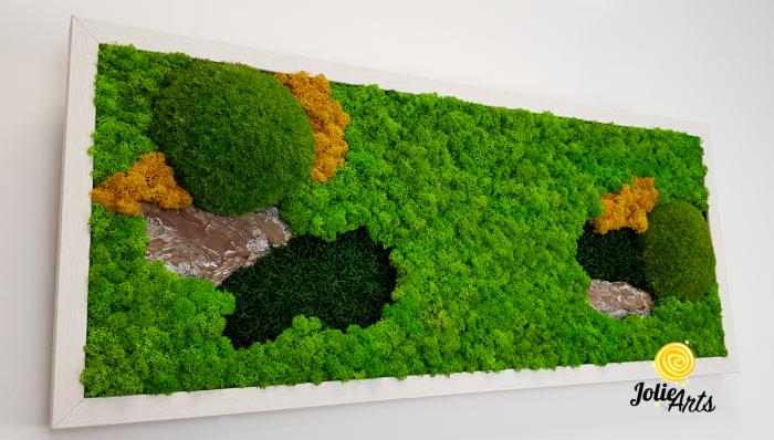 Tablou licheni, muschi si scoarta pin [4]