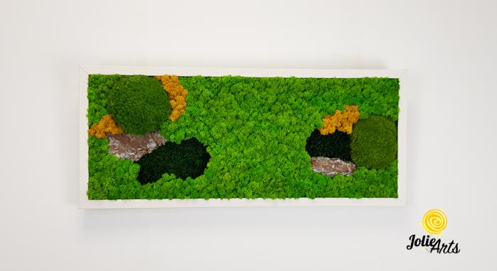Tablou licheni, muschi si scoarta pin [2]
