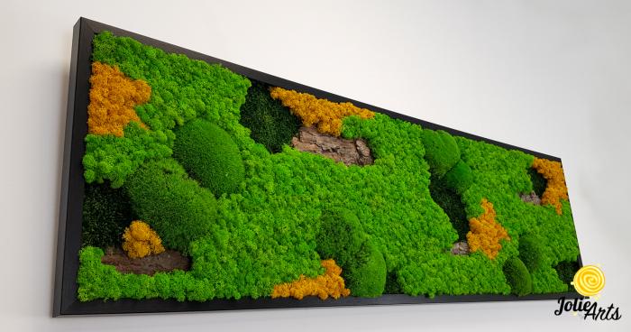 Tablou licheni, muschi si plante naturale stabilizate. Model Scoarta cu galben, Jolie Arts, www.tablouriculicheni.ro-2 [4]