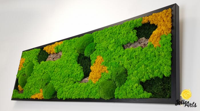 Tablou licheni, muschi si plante naturale stabilizate. Model Scoarta cu galben, Jolie Arts, www.tablouriculicheni.ro-2 [5]