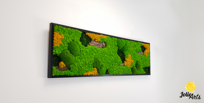Tablou licheni, muschi si plante naturale stabilizate. Model Scoarta cu galben, Jolie Arts, www.tablouriculicheni.ro-2 [3]