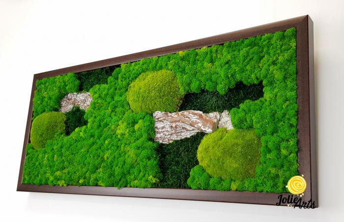 Model Scoarta: muschi de padure, scoarta pin si licheni stabilizati. [6]