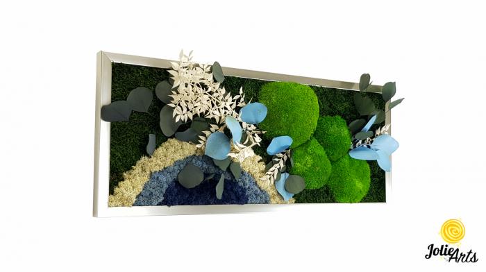 Tablou licheni, muschi si plante naturale stabilizate. Model Soare alb cu albastru, Jolie Arts, www.tablouriculicheni.ro-2 [0]