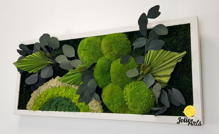 Tablou licheni, muschi si plante naturale stabilizate Jolie Arts, model Soare Alb, rama argintie, 40 x 100 cm, www.tablouriculicheni.ro-3 [5]