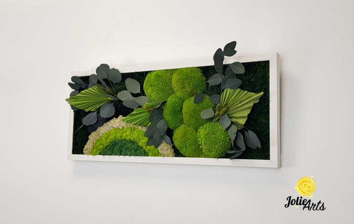 Tablou licheni, muschi si plante naturale stabilizate Jolie Arts, model Soare Alb, rama argintie, 40 x 100 cm, www.tablouriculicheni.ro-3 [1]